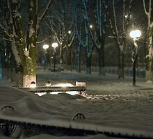 Winter Bench 5 by fine