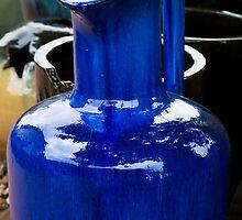 The Blue Pot by Jonicool