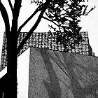 Shadowplay by Lisa Drew