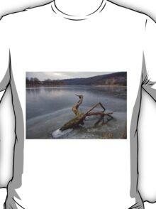 Sabarov Dam Vinnitsa 2 T-Shirt