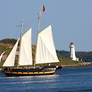 Sailing Tour In Halifax by HALIFAXPHOTO