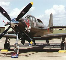 King Cobra airplane, Soviet Air Force by chord0