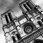 Notre Dame by Chris Richards