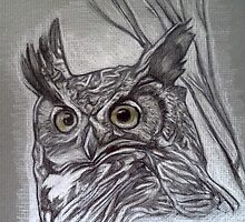Great horned owl drawing by RobCrandall