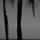 Palm Trees Kuta Beach by Marion Ardana