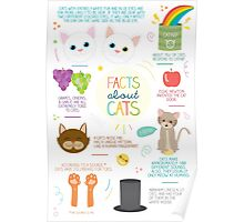 Facts About Cats Poster