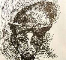 Bertrina Hetzel - Pen & Ink by Barbara Sparhawk