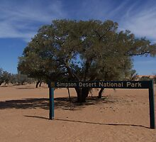 The Simpson Desert National Park, Far Western Queensland. by Lisa Evans