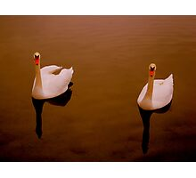 It takes two Photographic Print