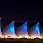 Night Light At Canada Place by phil decocco