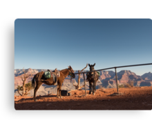 All in a Day's Work – Grand Canyon National Park, Arizona Canvas Print
