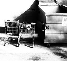 Dumpster and Shopping Carts by richard-harlos