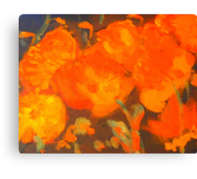 Wild Poppies (oil on canvas 23 X 30 cm) Canvas Print