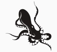black octopus by antony hamilton