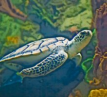 Stylized photo of sea turtle swimming underwater. by NaturaLight