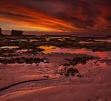 Evening Fire, Fingal Beach by Michael Eggleton