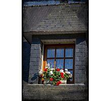 Window Box Photographic Print