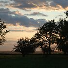 Country Silhouettes by Crystal Zacharias