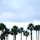 Palm and Friends by Tyler Coleman