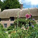 Thomas Hardy`s Cottage by shakey
