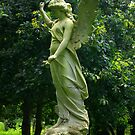 Wings of the Angels by Trevor Kersley