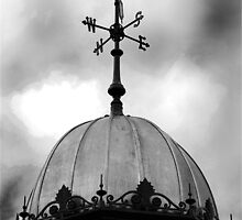 Weather Vane Compass by incurablehippie