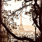 Paris by Beth A