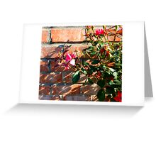 Roses Past Beauty Greeting Card