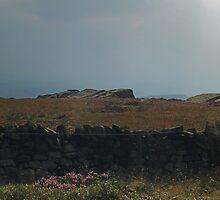 Rombald's Moor 4 by WatscapePhoto