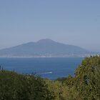 Vesuvius across the bay by JohnT