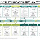 Guide to Antibiotics by Compound Interest