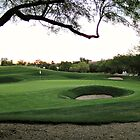 TCP Scottsdale: Stadium Course by housenbaby