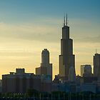 Chicago Skyline including Sears Tower (Alan Copson  2007) by Alan Copson
