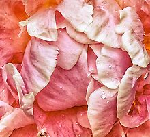Petal Power by Simon Duckworth