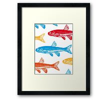 Colourful Fish Framed Print