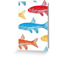 Colourful Fish Greeting Card