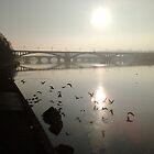 Bridges by NeilColes