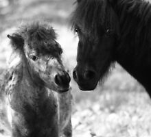 Mother and baby by Michelle Dry