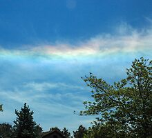 Circumhorizon Arc 2008-05-28 11:52:28 by Paul Gitto