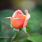 love me for love's sake . . . by WalnutHill