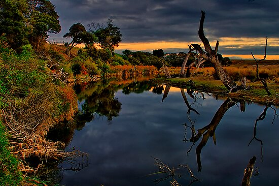 """""""Beside Still Waters"""" by Phil Thomson IPA"""