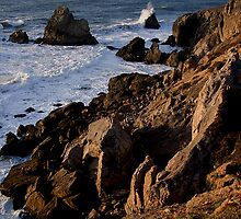 Rocky Coast by David Pierce