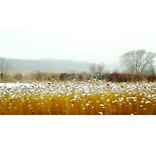Winter Prairie by Alma Lee Photographic Print