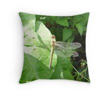 NORFOLK HAWKER DRAGONFLY-AESHNA ISOSCELES Throw Pillow