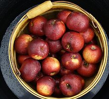 Basket of Apples by spencerphotos