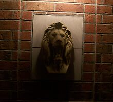 The Lion Guard by becteri