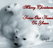 MERRY CHRISTMAS - FROM OUR FAMILY TO YOURS by Madeline M  Allen