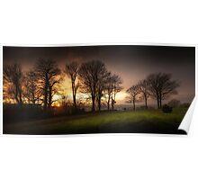 Sunset at Ravenhill park Poster