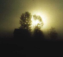 Misty Surise by peaceofthenorth