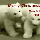 MERRY CHRISTMAS ~ MOM & DAD by Madeline M  Allen
